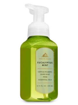 Eucalyptus Mint Foaming Hand Wash